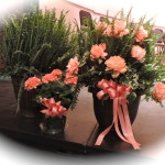 Floral Arrangement from Maas